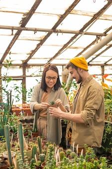 Jovem cultivadora asiática sorridente de óculos verificando uma pequena planta no vaso com sua assistente na estufa