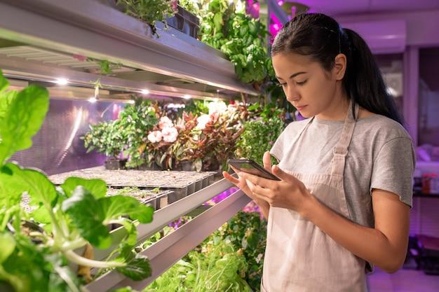 Jovem cultivadora séria de avental em pé na estufa e verificando anotações no telefone