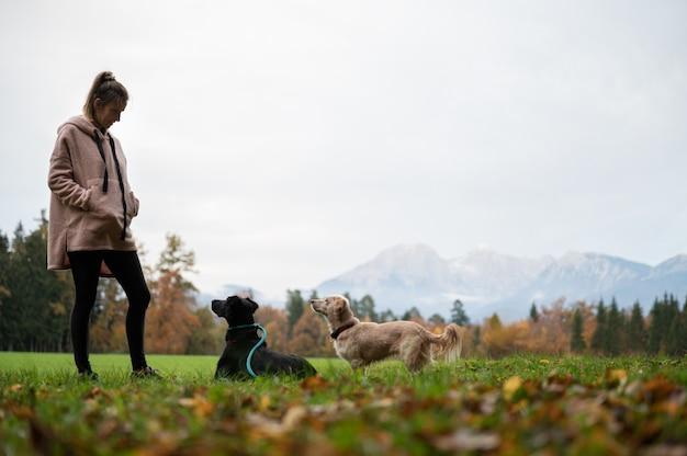 Jovem de pé num prado verde, treinando seus dois cães, olhando atentamente para ela.