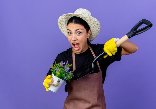 Jovem e bela jardineira de avental e chapéu segurando uma pá e um vaso de planta parecendo surpresa e maravilhada em pé sobre a parede azul