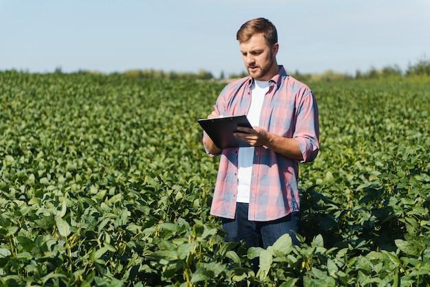 Jovem e bonito engenheiro agrícola em um campo de soja com um tablet nas mãos no início do verão