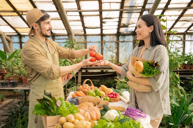 Jovem e bonito fazendeiro barbudo de avental e boné vendendo vegetais maduros para uma mulher asiática em uma mercearia