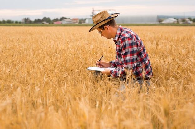 Jovem fazendeiro escrevendo em um documento o plano de desenvolvimento do trigo. fazendeiro verificando campo de trigo