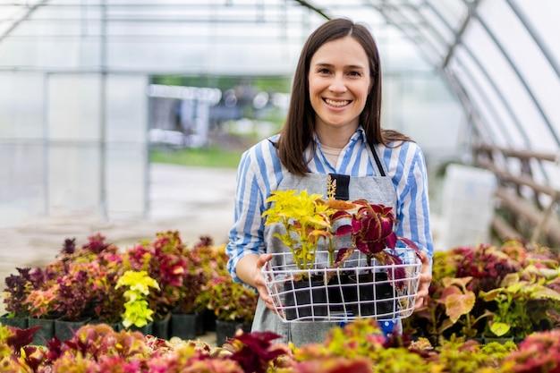 Jovem feliz e sorridente mulher trabalhando com flores em uma estufa segurando uma caixa de plantas multicoloridas