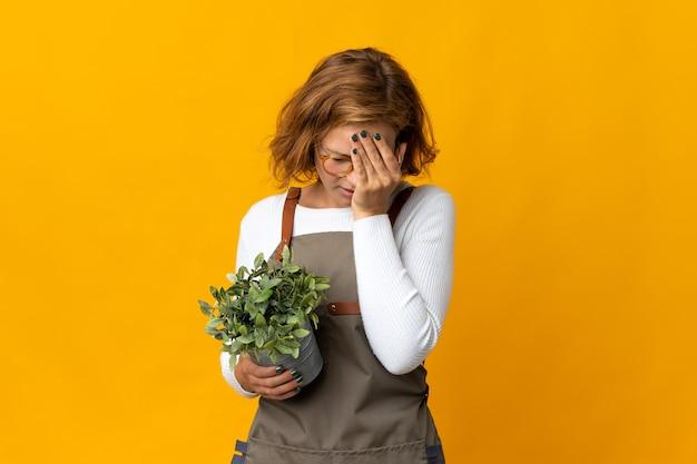 Jovem georgiana segurando uma planta isolada em uma parede amarela com expressão de cansaço e doentia