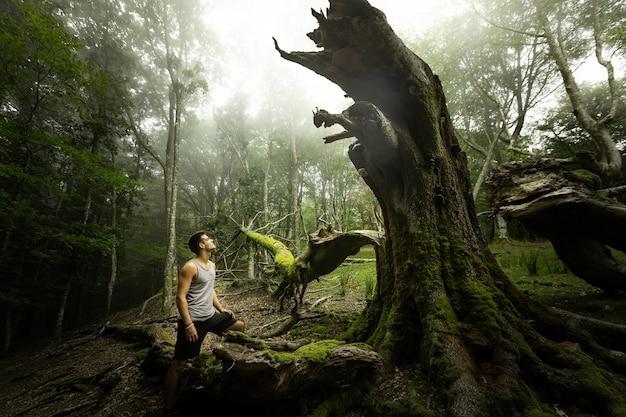 Jovem homem caucasiano explorando uma floresta nebulosa em artikutza, país basco