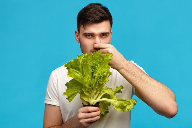 Jovem infeliz e frustrado posando isolado com um ramo de alface, apertando o nariz e franzindo a testa, com expressão facial de nojo, odeia vegetais, segue dieta vegetariana