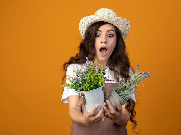 Jovem jardineira empolgada de uniforme usando chapéu de jardinagem segura e olha para vasos de flores isolados na parede laranja com espaço de cópia