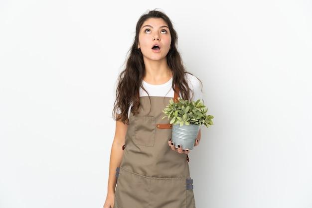 Jovem jardineira russa segurando uma planta isolada, olhando para cima e com expressão de surpresa