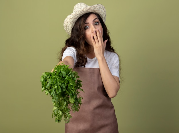 Jovem jardineira surpresa de uniforme usando chapéu de jardinagem coloca a mão na boca e segura coentro isolado na parede verde oliva