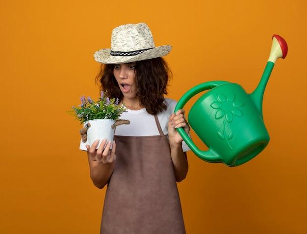 Jovem jardineira surpresa de uniforme, usando um chapéu de jardinagem, segurando um regador e olhando para uma flor em um vaso de flores isolado em laranja