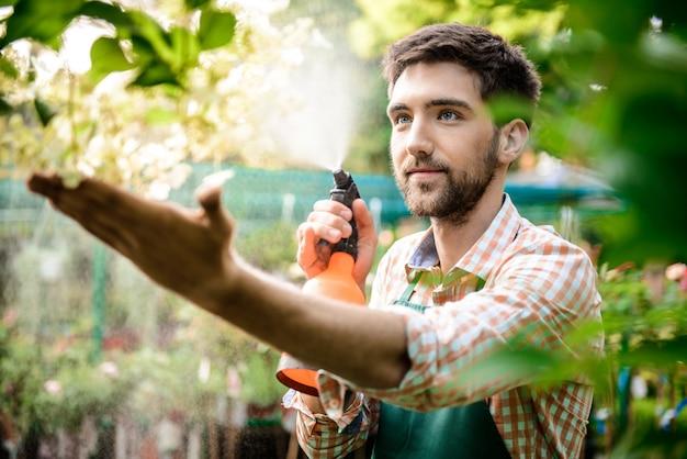 Jovem jardineiro alegre bonito sorrindo, regando, cuidando de flores
