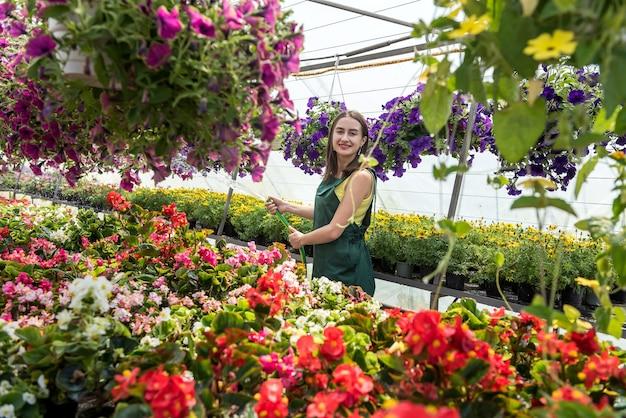 Jovem jardineiro atraente todos os dias cuidando das plantas com um regador em uma estufa