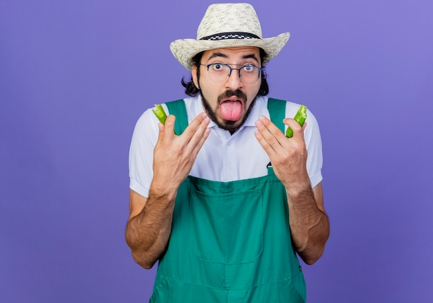 Jovem jardineiro barbudo vestindo macacão e chapéu segurando metades de pimenta verde picante esticando a língua com a sensação de queimar na boca