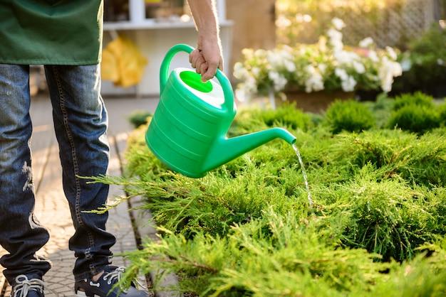 Jovem jardineiro bonito molhando, cuidando de plantas close-up.