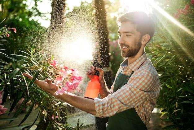 Jovem jardineiro bonito sorrindo, regando, cuidando de flores flare luz solar no fundo.
