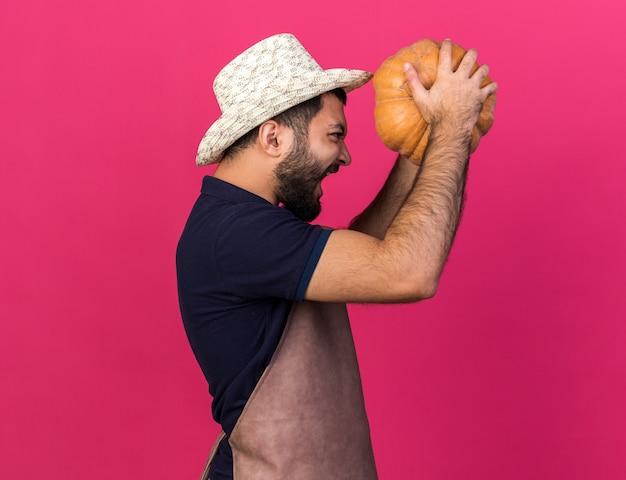 Jovem jardineiro caucasiano irritado com chapéu de jardinagem segurando e olhando para uma abóbora isolada na parede rosa com espaço de cópia