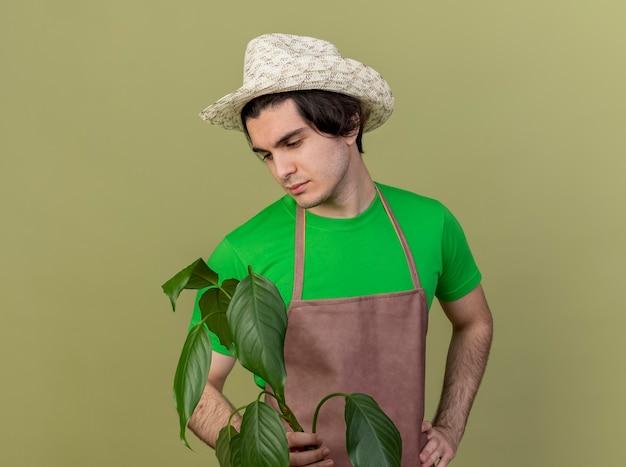 Jovem jardineiro de avental e chapéu segurando uma planta olhando para ela com uma expressão triste em pé sobre um fundo claro