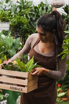 Jovem jardineiro que transporta a caixa com plantas