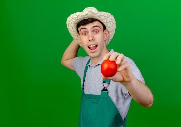 Jovem jardineiro surpreso com um chapéu de jardinagem segurando um tomate e levantando a mão