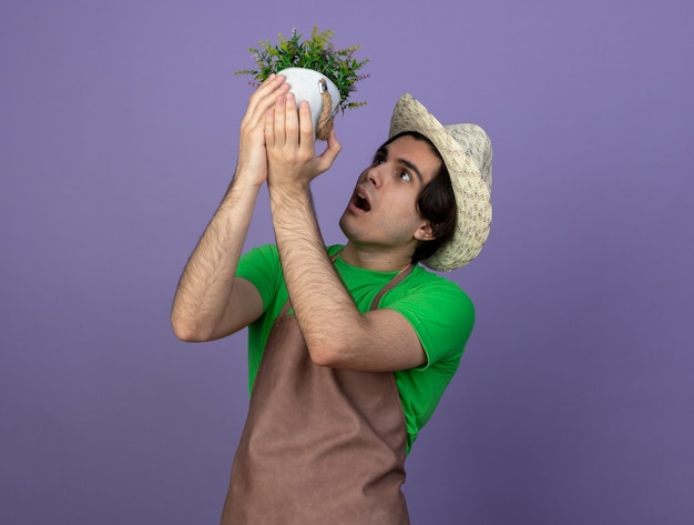 Jovem jardineiro surpreso de uniforme, usando chapéu de jardinagem, levantando e olhando para uma flor em um vaso de flores