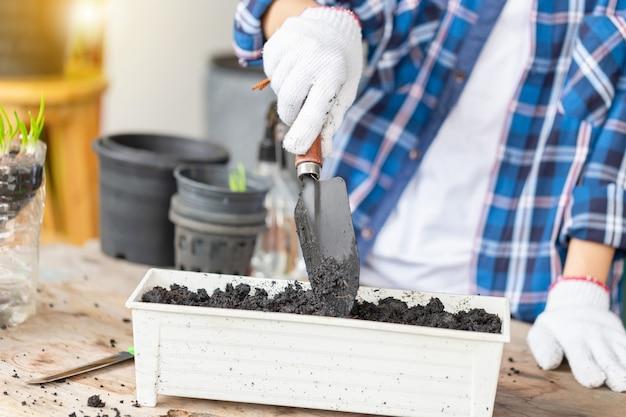 Jovem jardineiro usando instrumentos de jardim durante o plantio de mudas, conceitos de jardinagem
