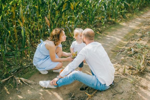 Jovem linda mãe com vestido azul claro, pai caucasiano forte com cabelo escuro curto na camisa branca e jeans azul, brincando com seu filho loiro em um milharal no verão.
