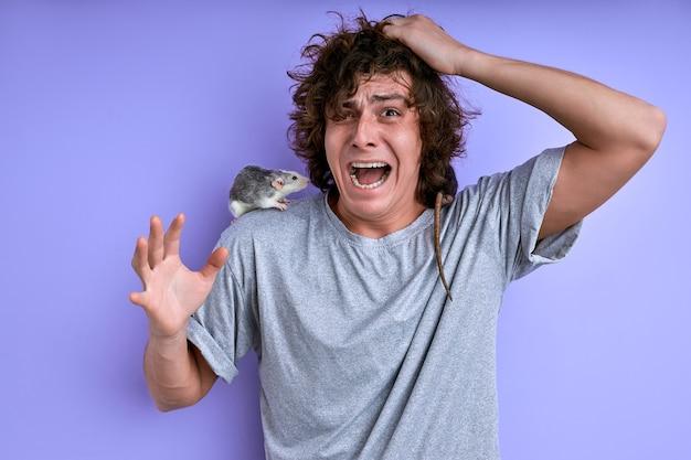 Jovem macho grita com medo de rato decorativo isolado sobre fundo roxo, macho sofre de musofobia