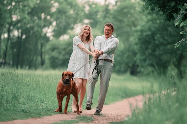 Jovem marido e sua esposa com seu cachorro de estimação em um passeio no parque