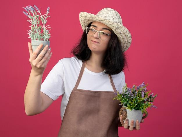Jovem morena confusa, jardineira feminina, usando óculos óticos e uniforme, usando chapéu de jardinagem segura e olha para vasos de flores isolados na parede rosa com espaço de cópia