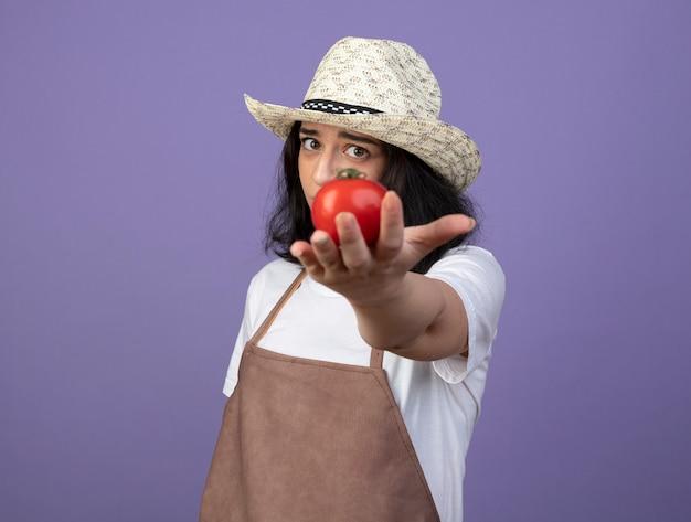 Jovem morena decepcionada de uniforme, usando chapéu de jardinagem, segurando tomate isolado na parede roxa