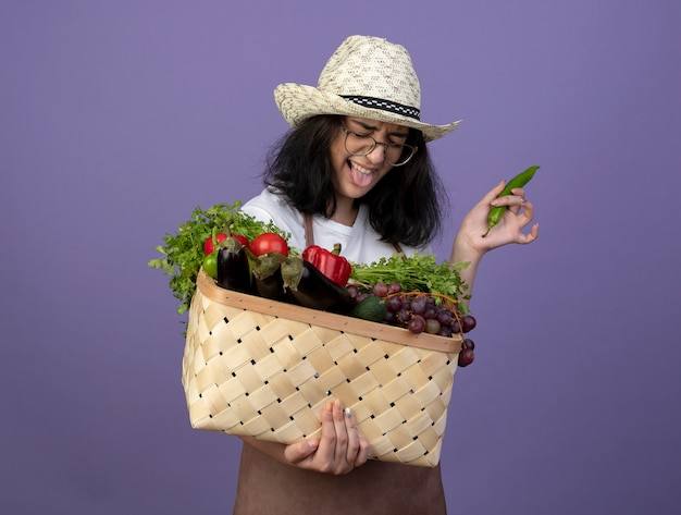 Jovem morena descontente, jardineira feminina de óculos ópticos e uniforme, usando chapéu de jardinagem, enfia a língua para fora segurando uma cesta de vegetais e pimenta isolada na parede roxa