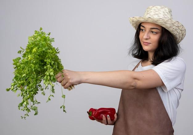 Jovem morena satisfeita com um jardineiro de uniforme, usando um chapéu de jardinagem, segurando pimentas vermelhas e olhando para o coentro isolado na parede branca com espaço de cópia