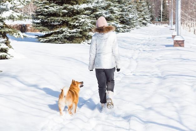 Jovem mulher andando com cachorro shiba inu no inverno