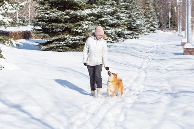 Jovem mulher andando com cachorro shiba inu