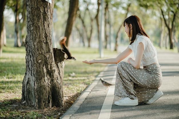Jovem mulher asiática com roupas brancas, alimentando as nozes com um esquilo em pé na árvore, encontrada acidentalmente enquanto passeava no parque com um pombo ao lado dela