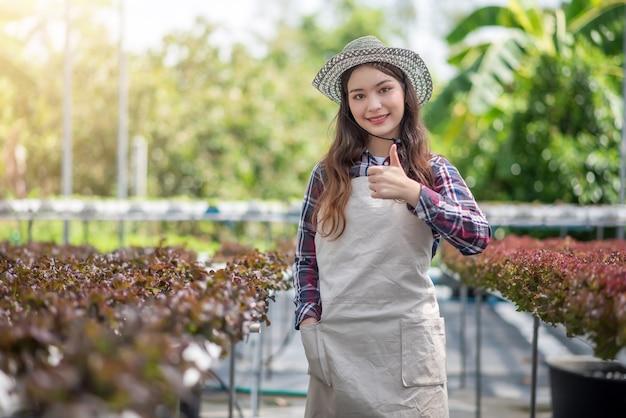 Jovem mulher asiática mostrando o polegar para cima de sua fazenda de hidroponia