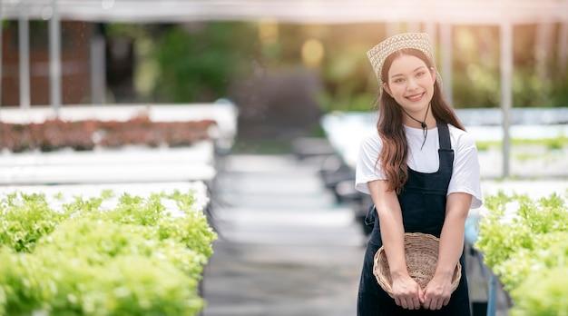 Jovem mulher asiática sorridente segurando cesta, colhendo vegetais de sua fazenda de hidroponia.