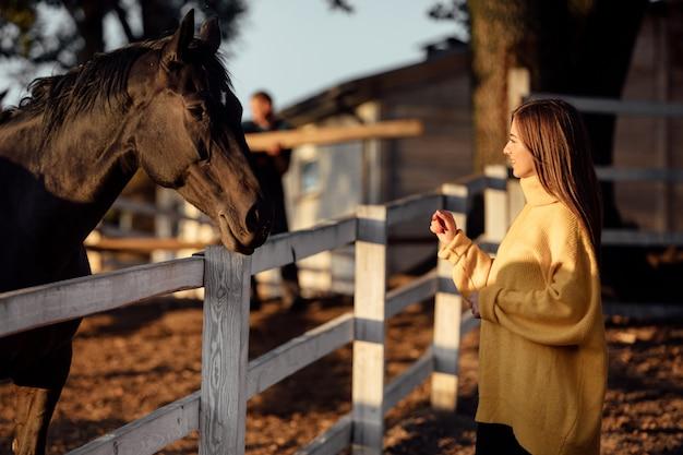 Jovem mulher bonita com um suéter amarelo perto dos cavalos no parque de outono em um dia ensolarado