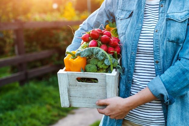 Jovem mulher com caixa de legumes ecológicos frescos ao pôr do sol