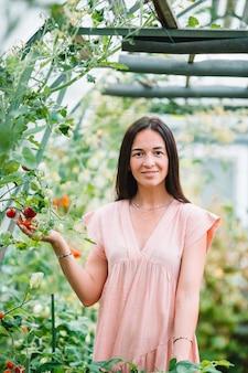 Jovem mulher com cesta de hortaliças e legumes em estufa. tempo de colheita