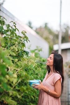 Jovem mulher com cesto de verdura e legumes na estufa