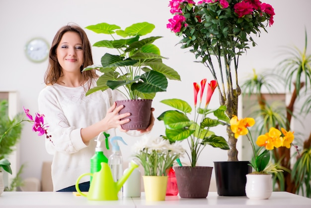 Jovem mulher cuidando de plantas em casa