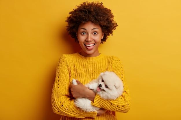 Jovem mulher feliz de cabelos cacheados brinca com spitz fofo fofo, segura o animal de estimação com ternura, brinque dentro de casa