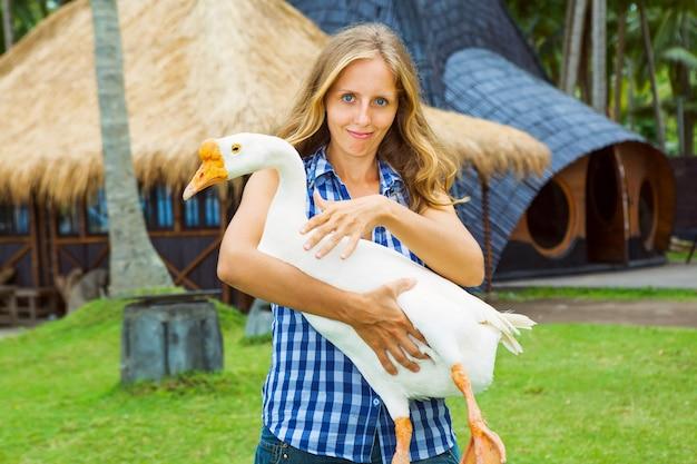 Jovem mulher feliz segura nas mãos animal de estimação engraçado da fazenda - grande ganso doméstico branco.
