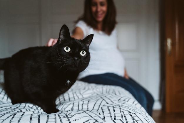 Jovem mulher grávida em casa com gato preto