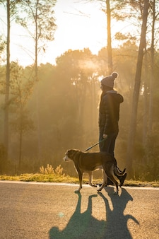 Jovem mulher passeando com seu cachorro na natureza com os raios do sol da manhã, brilho quente e longas sombras