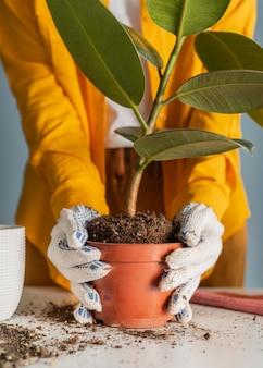 Jovem mulher plantando em casa