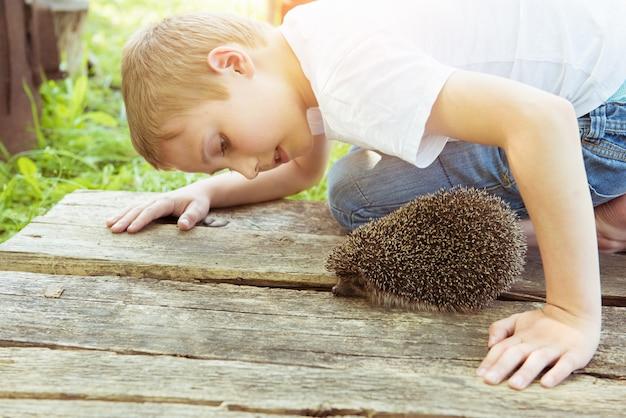 Jovem rapaz adolescente brincando com ouriço