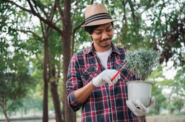 Jovem segurando uma árvore muda com uma tesoura no jardim
